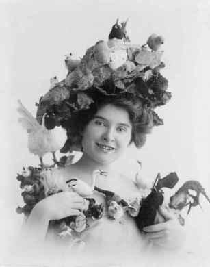 A atriz Christie McDonald exibe um bando de pássaros em seus chapéu, no início de 1900.